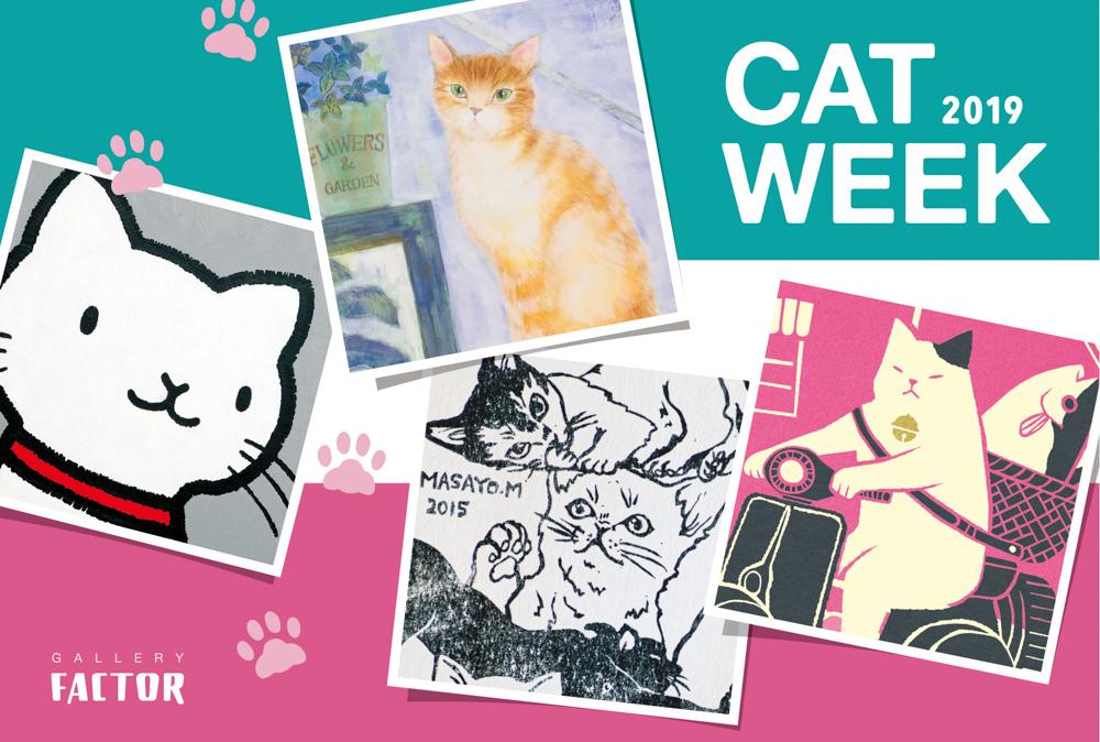 CAT WEEK 2019 DM